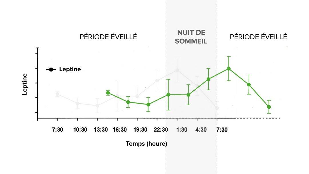 Décalage de la leptine quand on mange des féculents tard le soir