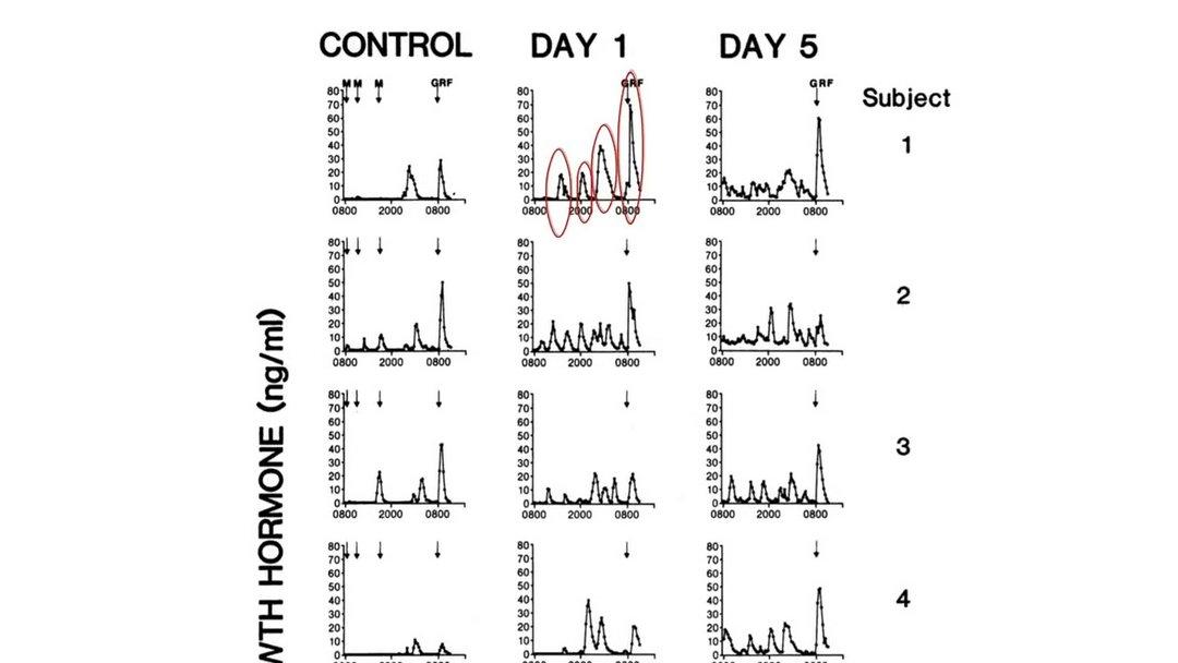 Jeûne intermittent 24h - Graphique de l'augmentation de l'hormone de croissance 1er jour de jeûne
